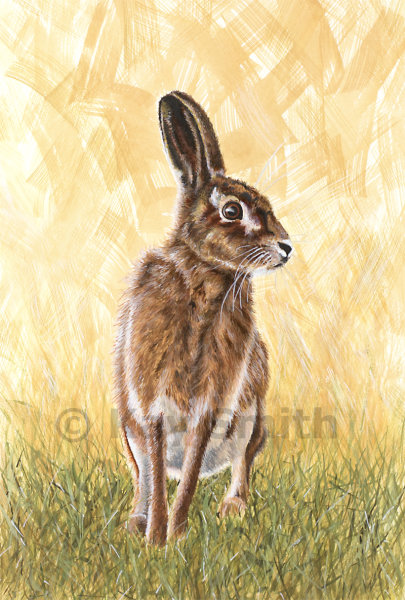 March hare