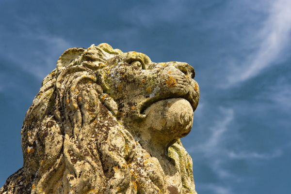 Burghley Lion