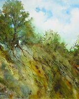 Buckinghamshire Landscape