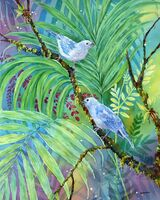 Blue Grey Tanagers
