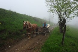 Farmer on his way home, Maramures, Romania
