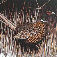 Fresh October brings the pheasant