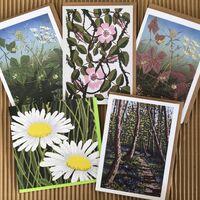 Wild flowers greetings cards pack