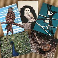 Birds greetings cards pack