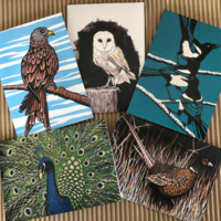 "Pack of 5 cards ""Birds"""