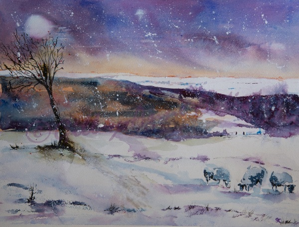 Great Brickhill Sheep on a Winter's Night