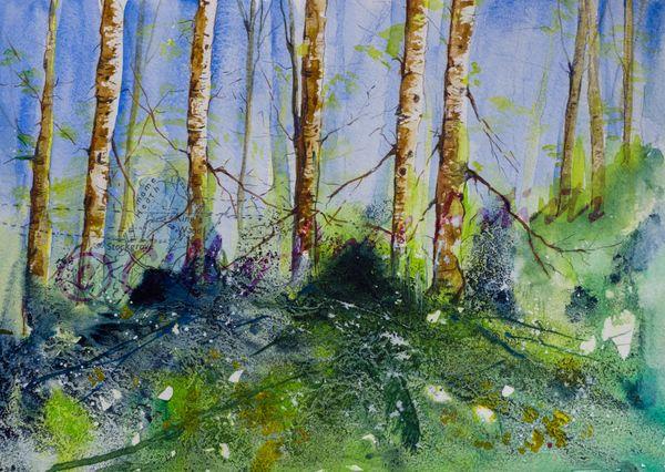 Spring in Stockgrove