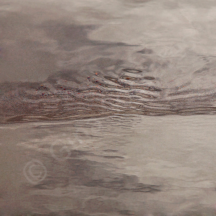 Water's Edge 13