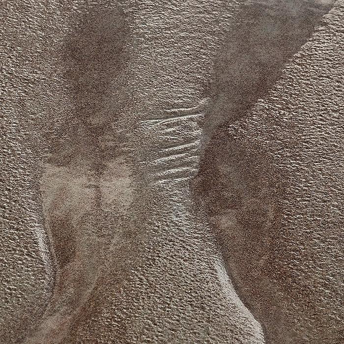 Water's Edge 14