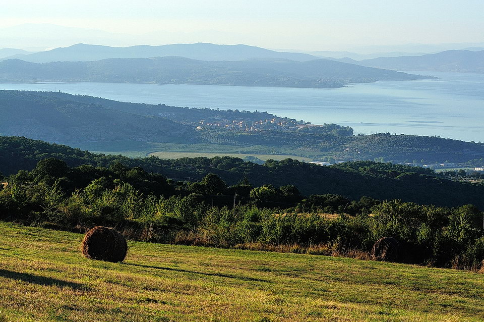 nearby hiking view of lake trasimeno