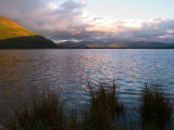 Waterside Landscape