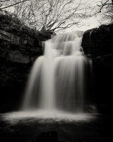 Summerhill Force #4