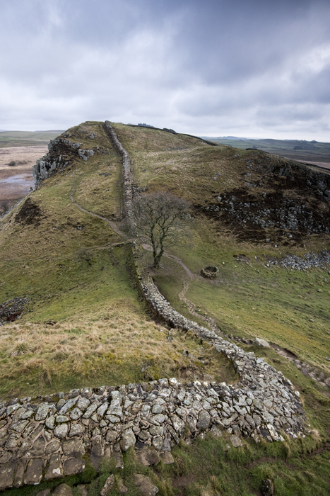 The path to Sycamore Gap