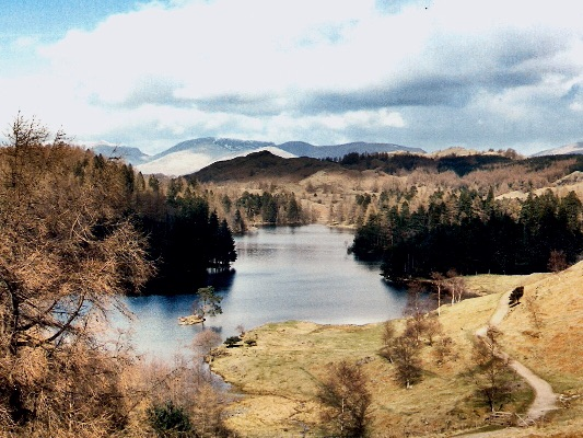 Autumn at Tarn Howes
