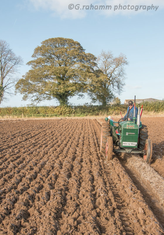 Standard Fordson ploughing at Bricklands Farm
