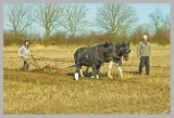 Wragby Ploughing March 14  2w