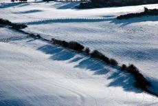 Snow field (2)