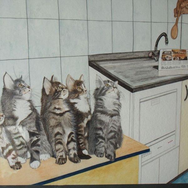 Daniel's cats