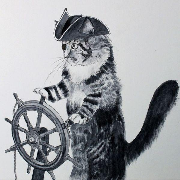 Marina steers the pirate ship