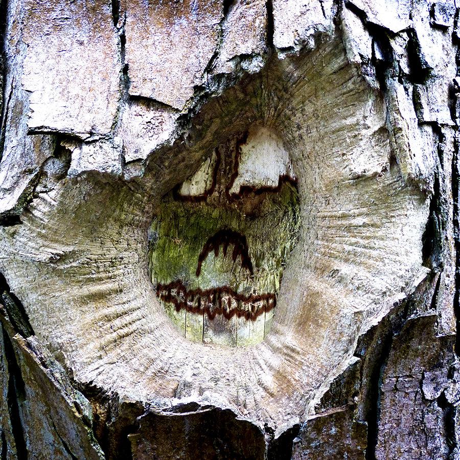 Halloween Tree Face