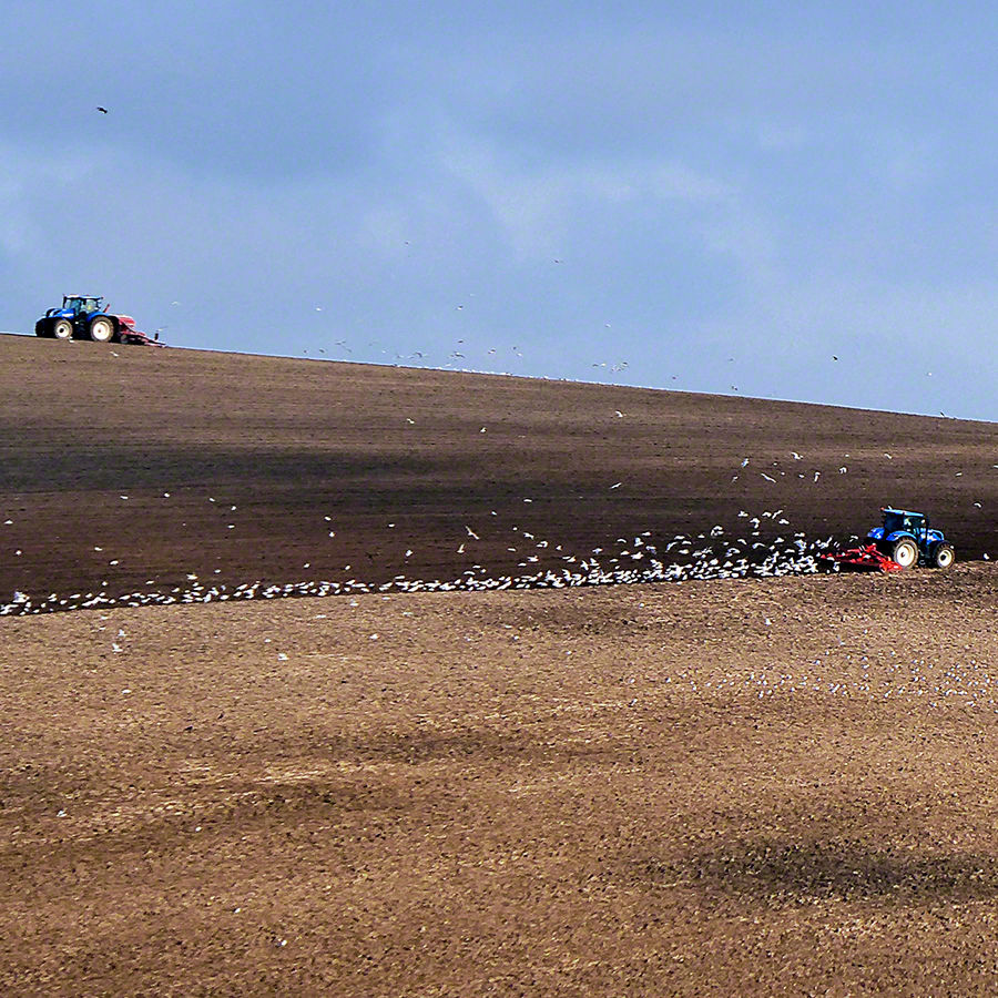 Ploughing the fields near Balmer Down - South Downs