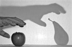 5th place  -  Grab Fruit
