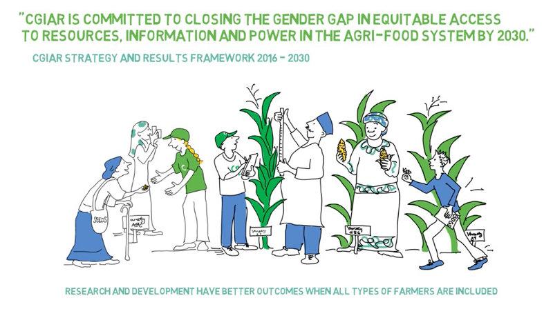 Gender in CGIAR