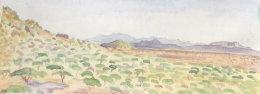 Il Ngwesi view