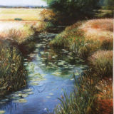 Cool Essex Waters - Print and card