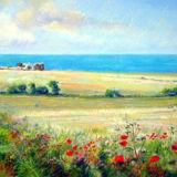 Norfolk Poppies - Sheringham