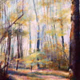 Spring in Norsey Woods - print & card