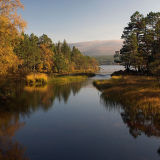 Autumn Colour, Loch Morlich