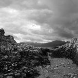 Cullin View