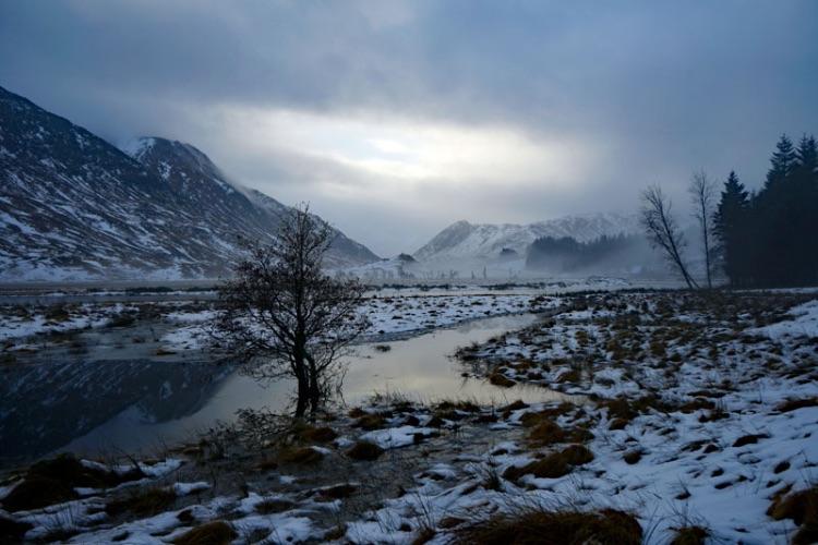 Mist in the Glen