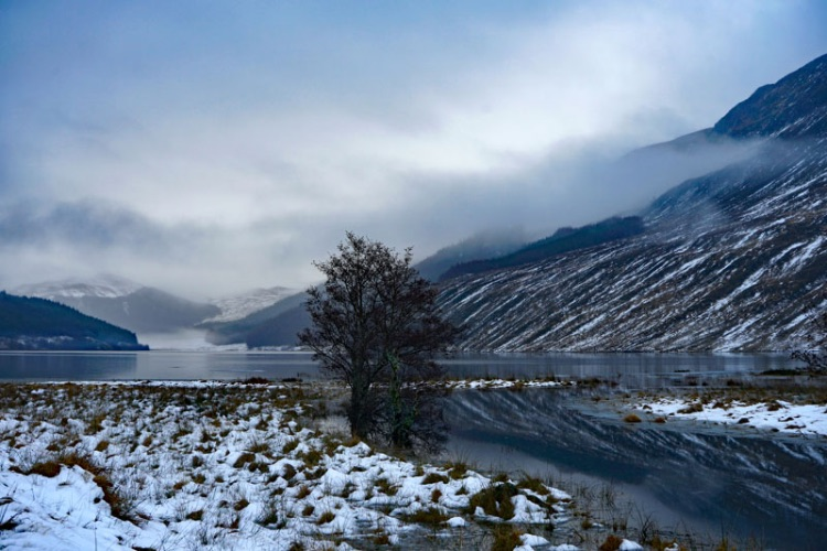 Strathconon Winter