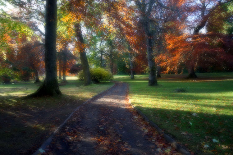 The Autumnal Route