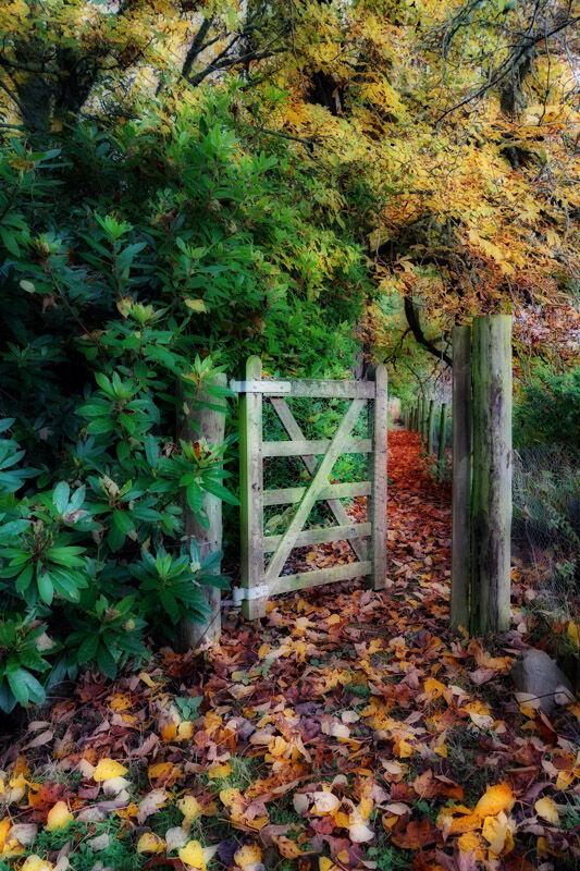 Autumnal Pallette