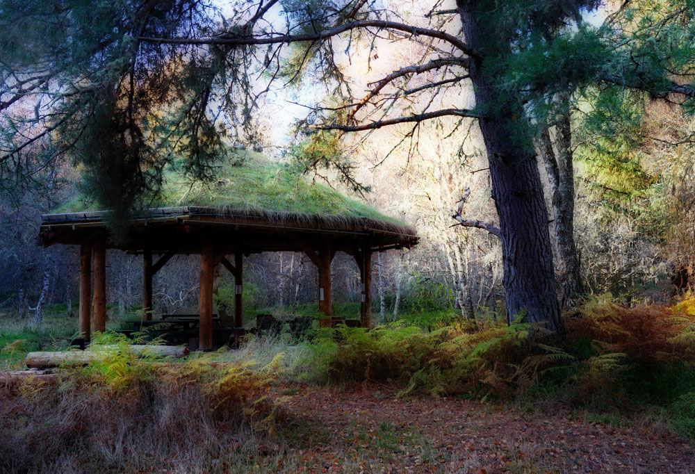 Mag's Wood