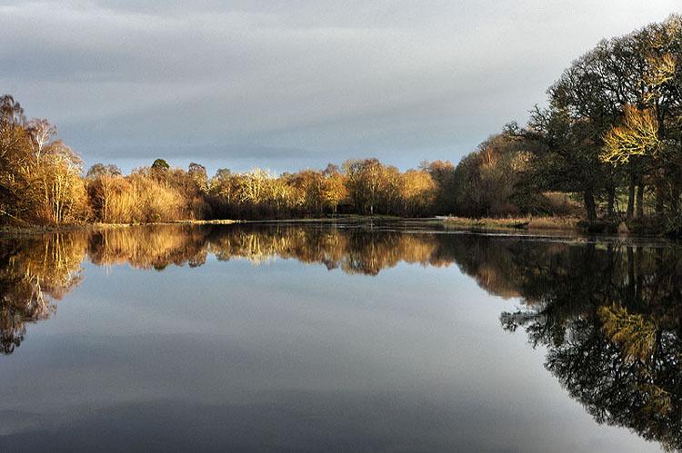 River Conon Reflections