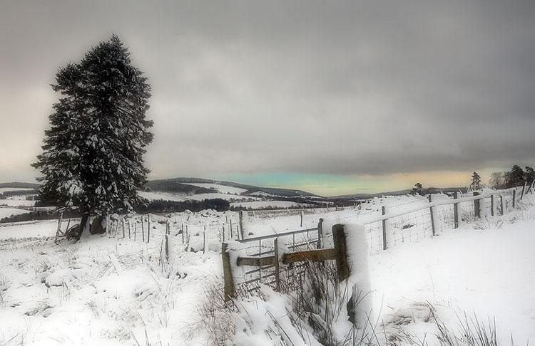 Highland Winter Scene