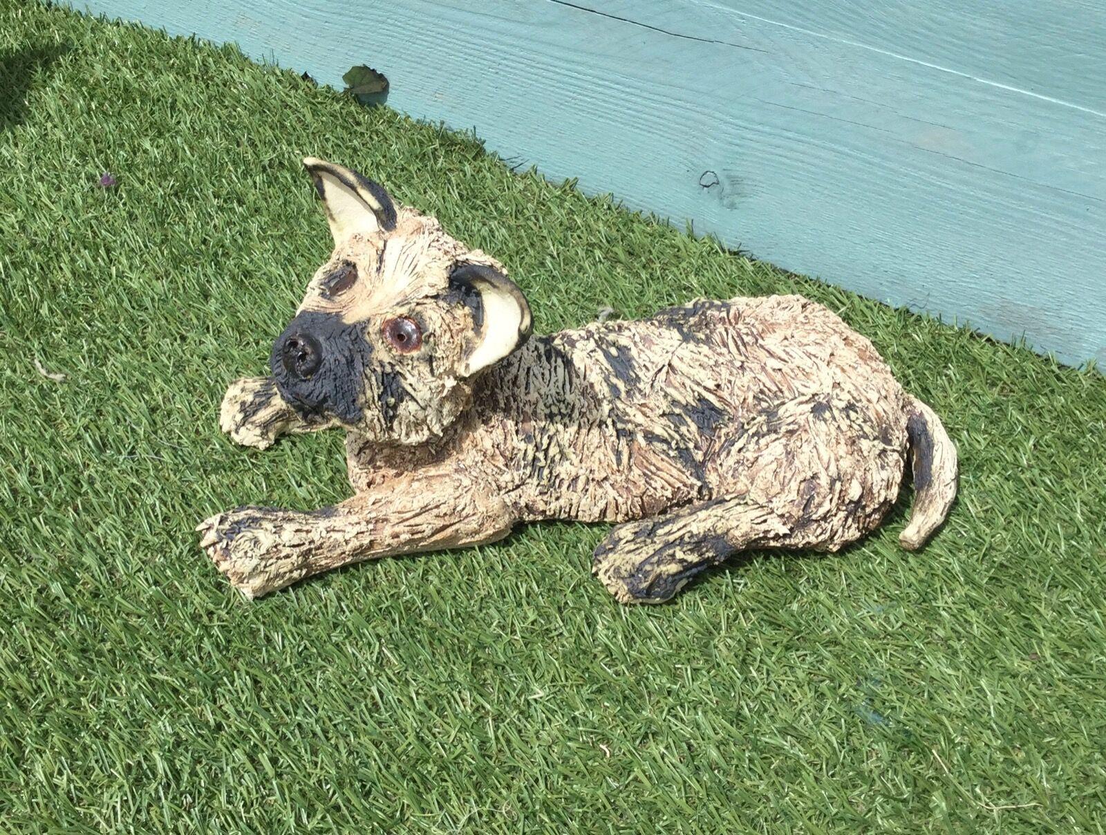 tammy Cairn Terrier