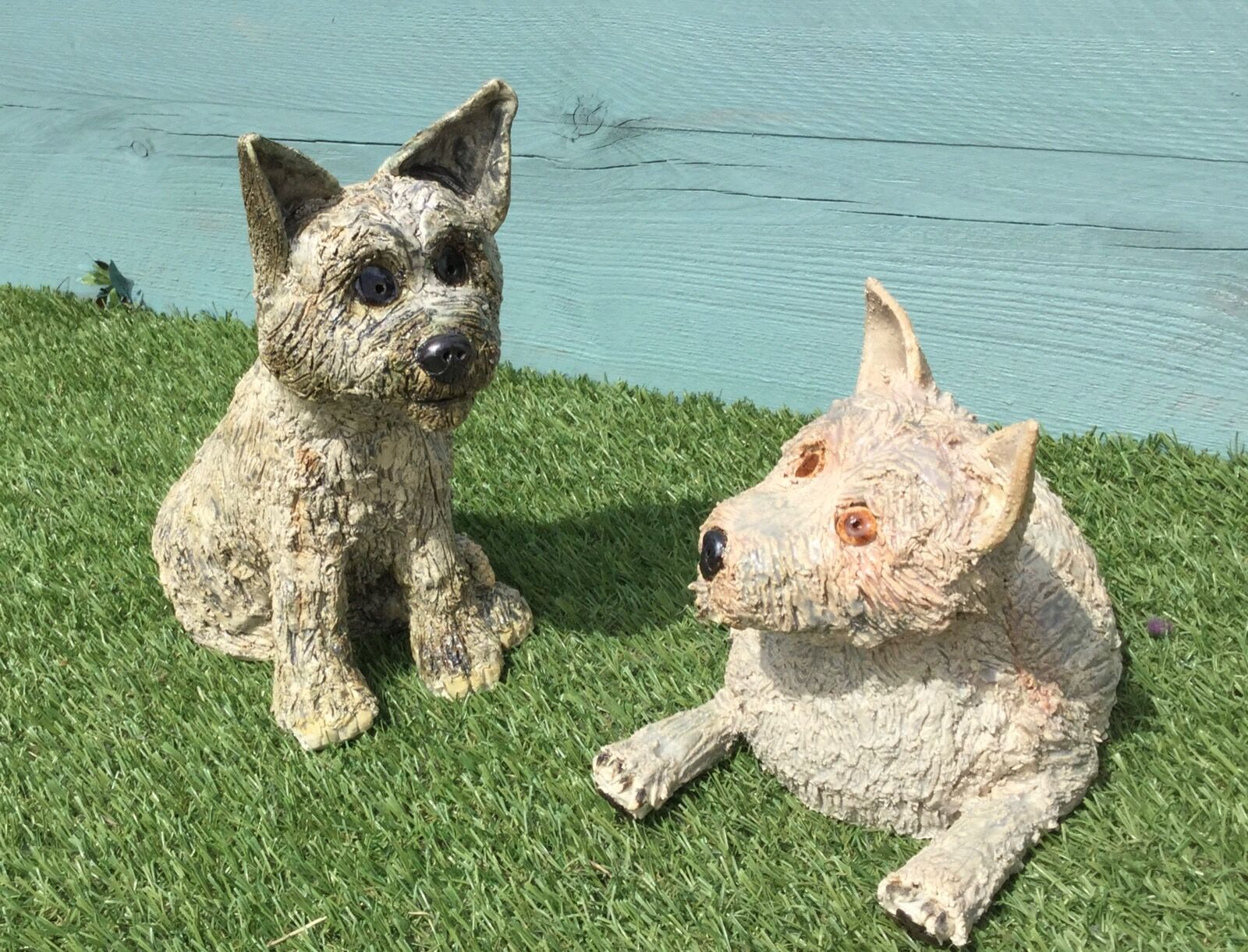 Two Cairn Terriers