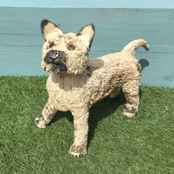 Walter Cairn Terrier