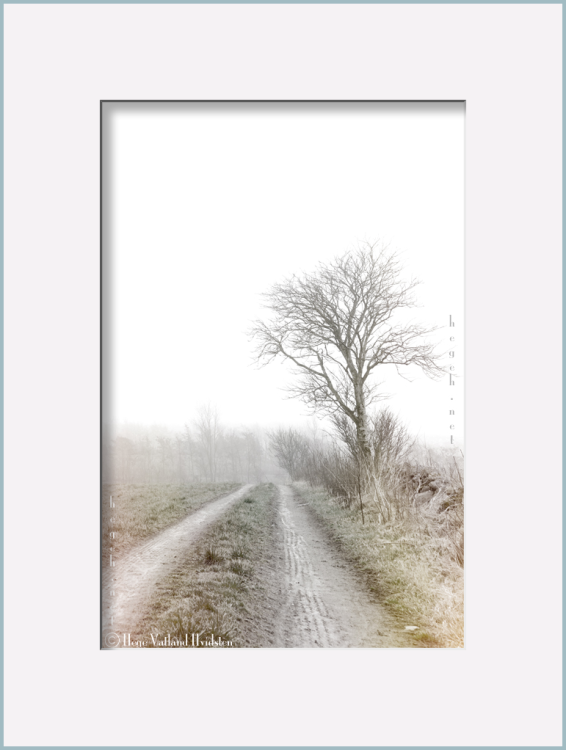 en grå dag i mars