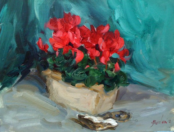 Cyclamen with oyster shells