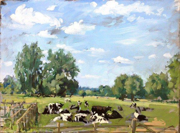 Friesians grazing at Flatford, Essex