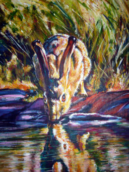 Hare at the river...