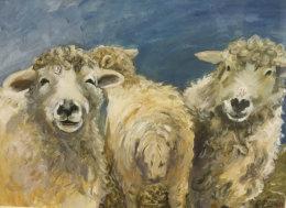Ruth Lewis- winner Jan 2018- sheep
