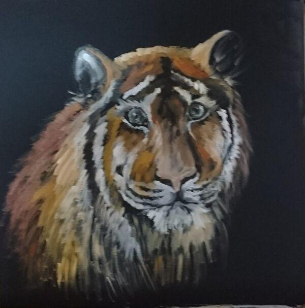 Rosie Tuszynska. Bengal Beauty. Oil on panel. £60     SOLD