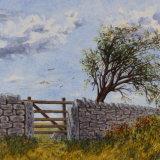 Beyond the Gate. Meirion Hughes